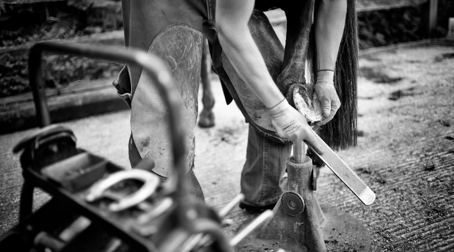 Beckie – A farrier who loves sport