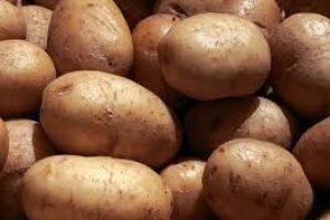 Potato vs. Sweet Potato